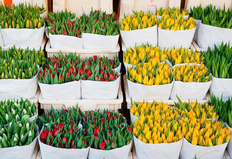 Букет оптовая, кто заказывает цветы малым оптом